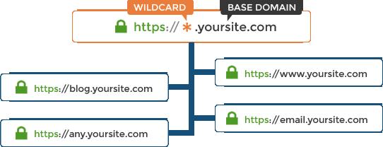 Wildcard چیست؟