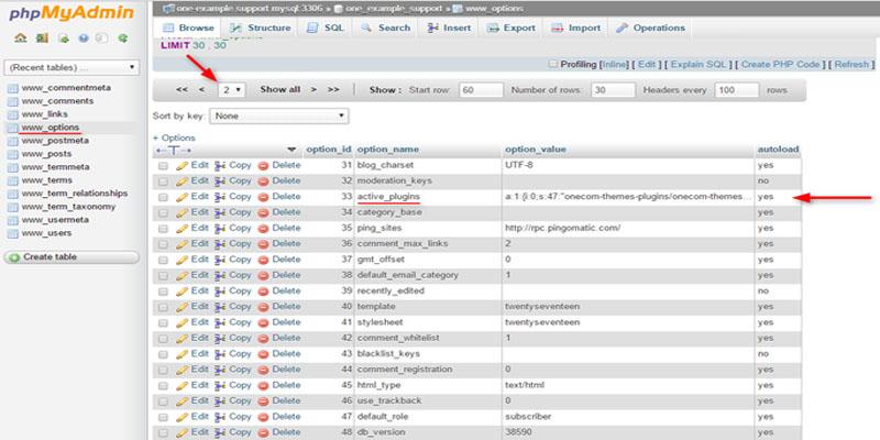 غیرفعال کردن افزونه های وردپرس از phpMyAdmin